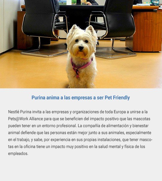 Purina anima a las empresas a ser Pet Friendly
