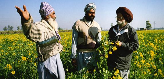 Agricultores locales